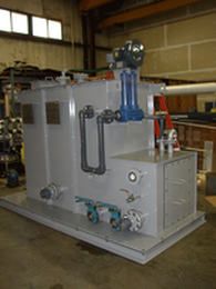 Black and gray water treatment system
